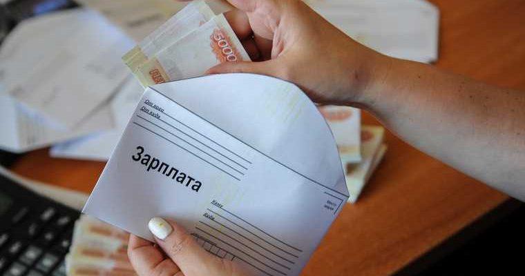 серые зарплаты уголовное наказание Совфед ФНС Егоров