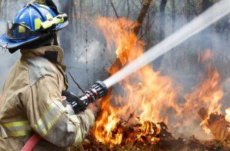 крупные лесные пожары лето 2020 прогноз