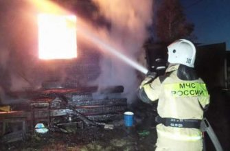 екатеринбург пожар коллективный сад автотранспортник