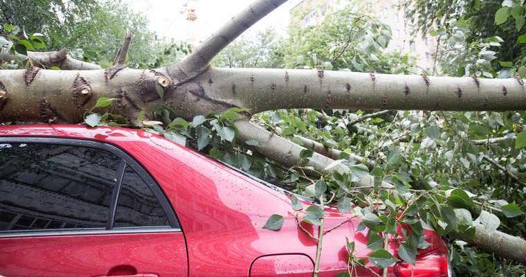 ветер гроза Красноярский край озеро шторм пострадавшие МЧС