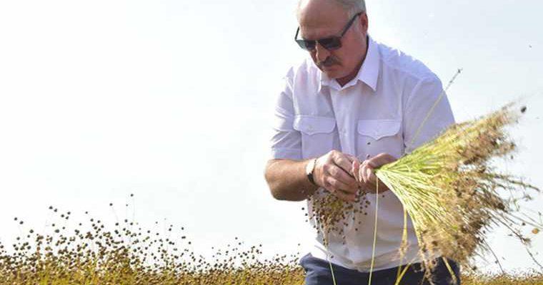 протесты Белоруссия выборы Лукашенко