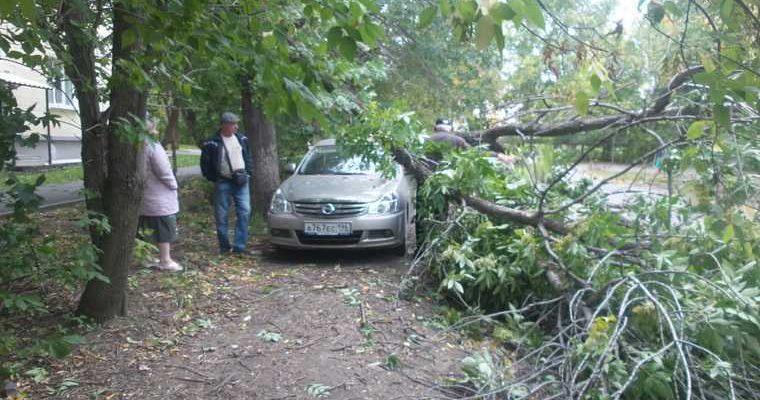 В Екатеринбурге ураган уронил столб на человека