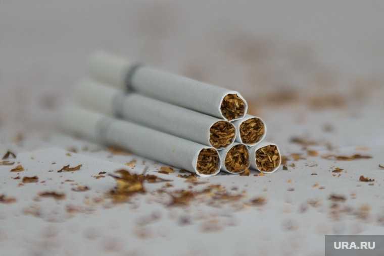 В России готовят новые требования к сигаретам