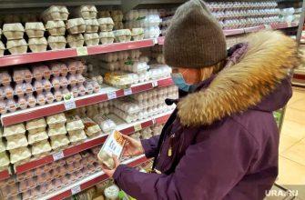 курица мясо птицы яйца куриные дорожает цена растет