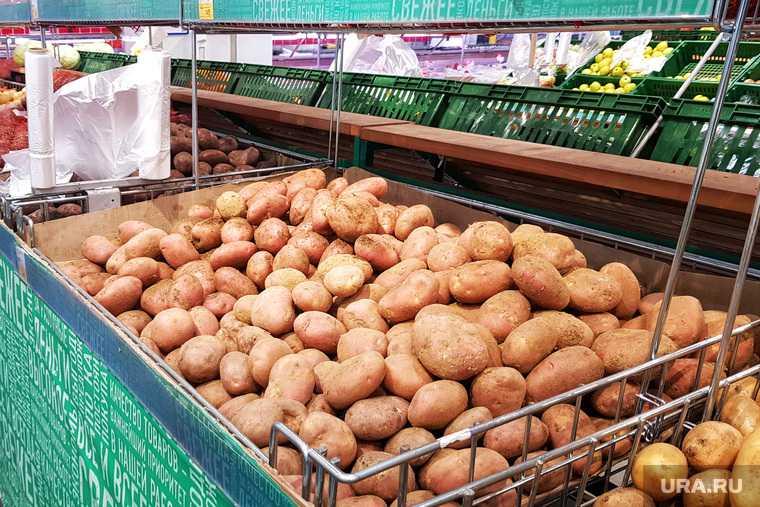 в России резко выросли цены на два популярных продукта