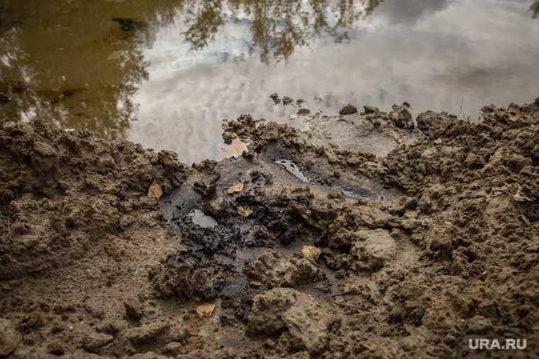 Разлив нефти пойма Оби дочка Роснефти