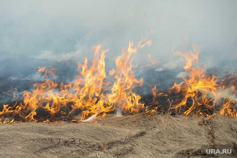 новости хмао пожар в югры режим чс противопожарный режим введен особый режим штраф за разведение костров