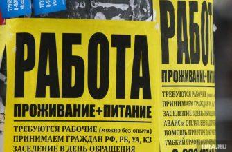 вакансии спрос в Перми
