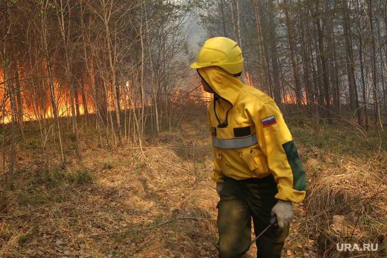 Южный лесной парк Екатеринбург пожар