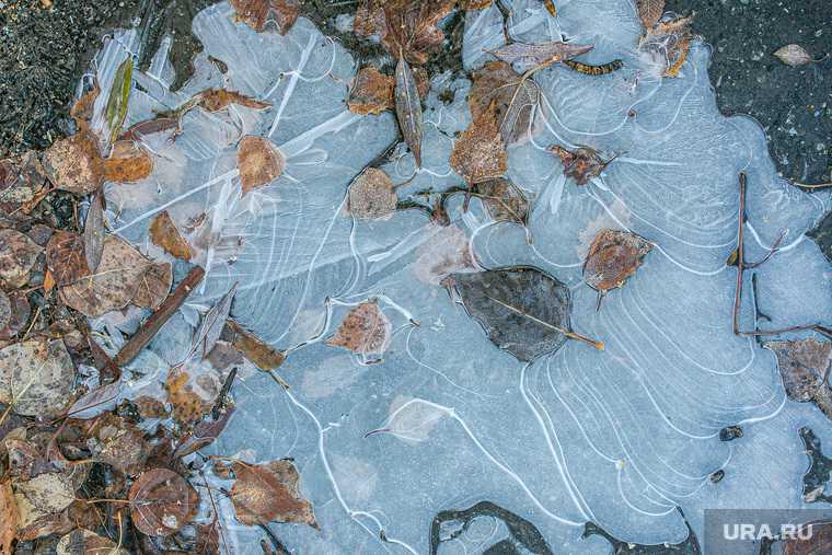 новости хмао погода в югре прогноз погоды синоптики ожидают заморозки возможен снег с дождем погода в ханты-мансийске нижневартовске сургуте